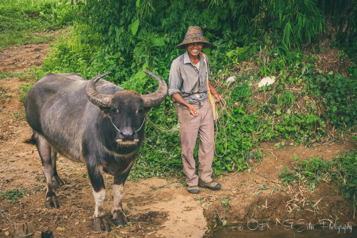 Local villager and his waterbuffalo. Hsipaw. Myanmar