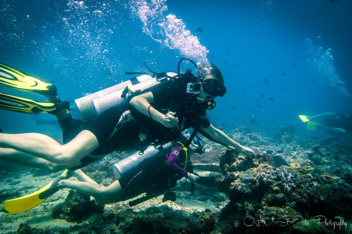 Oksana diving in Sipadan Island. Sabah. Malaysia. Borneo
