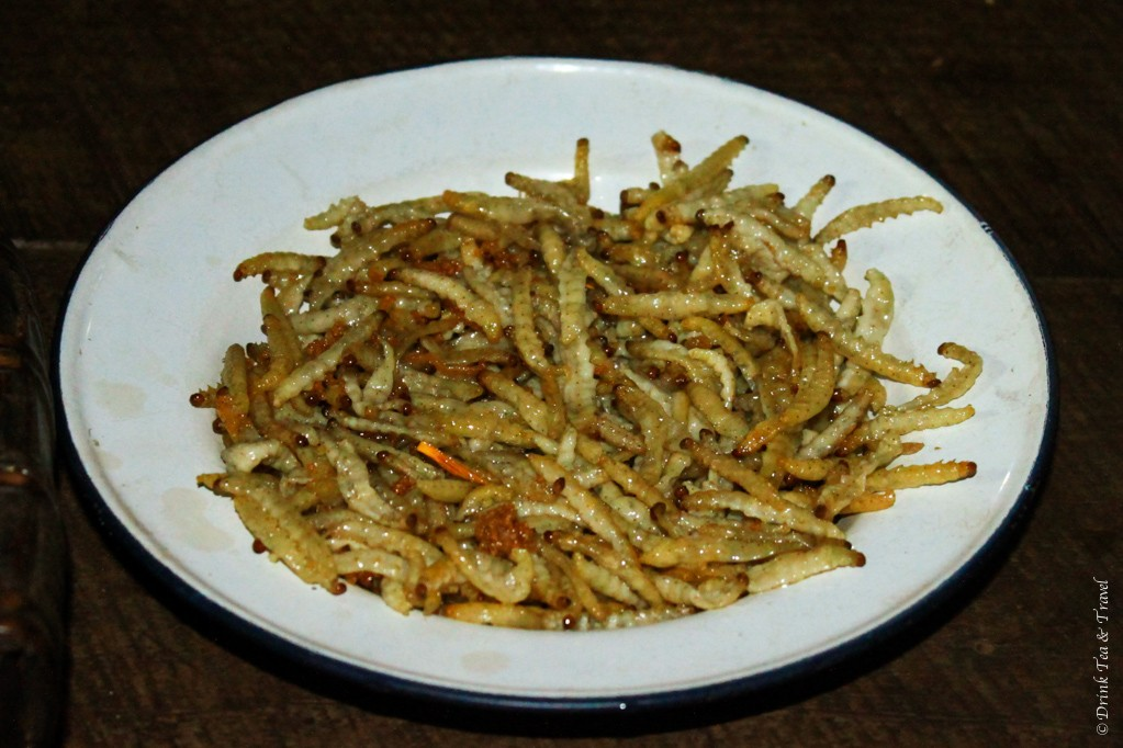 Fried bamboo worms - Northern Thailand delicacy