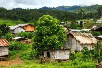 Hill Tribe trek Thailand