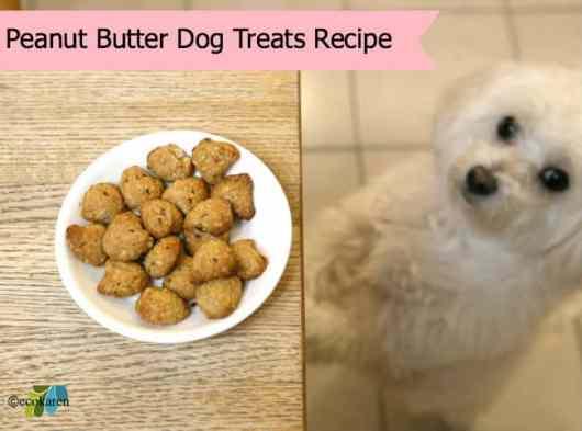 home made peanut butter dog treats by ecokaren