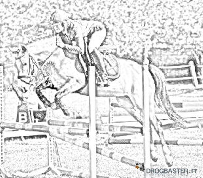 Cavallo immagini e disegni da stampare - Pony da colorare in immagini ...