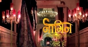 Naagin new serial on colors   Cast   Story   Timing   repeat telecast timing