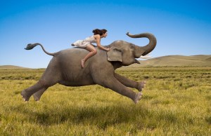 Happy Woman Riding Elephant 300x194 Happiness: In its Pursuit, Is it Possible? Part 1