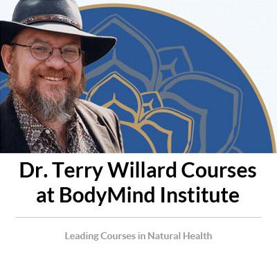 Terry-Willard-bodymindinstitute_004