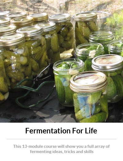 fermentation-for-life-2014_sidebar003