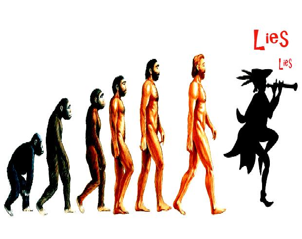 EvolutionB
