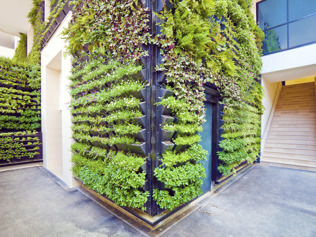 Fullsize Of Vertical Gardens Walls