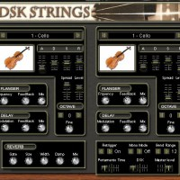 DSK Strings
