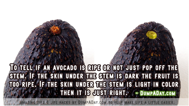 DumpADay Life Hacks- Avocado Ripeness