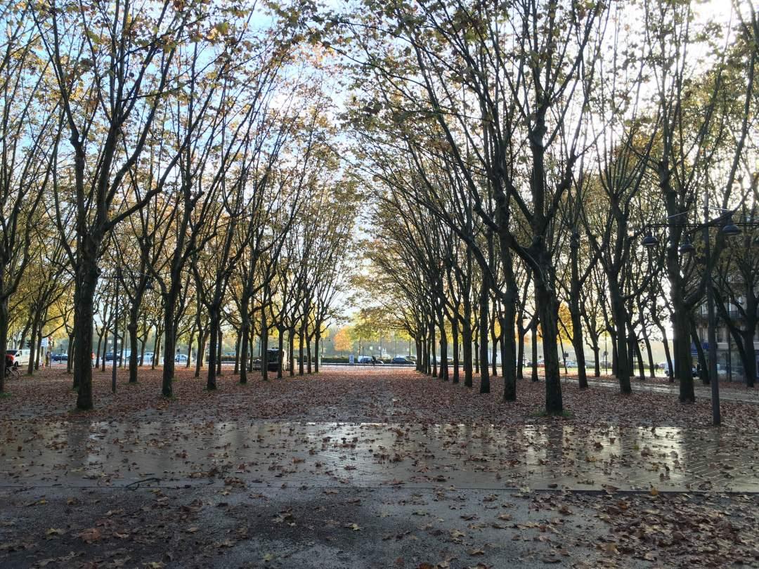 que-faire-a-bordeaux-en-novembre-blog-tourisme-couple-automne