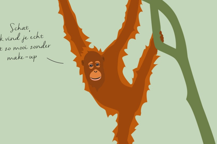 Palmolie, palmolie-vrij, Indonessië