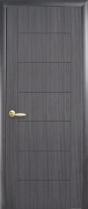 Двери Рина Grey