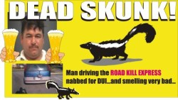 Dead Skunk on the back of the van