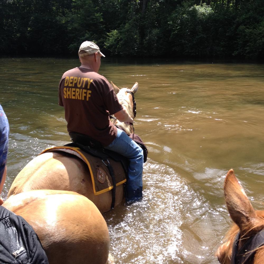 Alabama: DeKalb County Sheriff Jimmy Harris reports open arrest warrants as of March 10, 2016