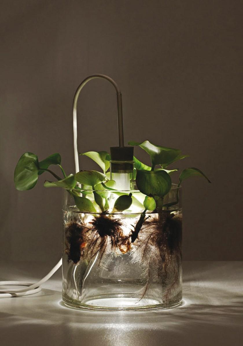 Vase&Leuchte (08)