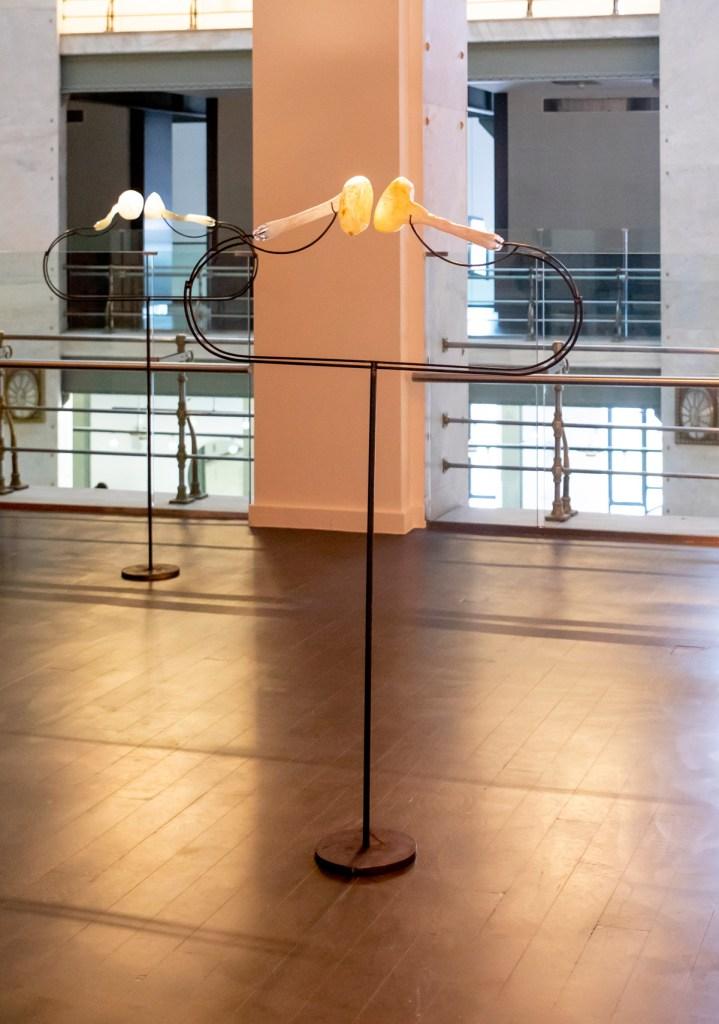 lifting-belly-arquitectura-viva-que-respira-10