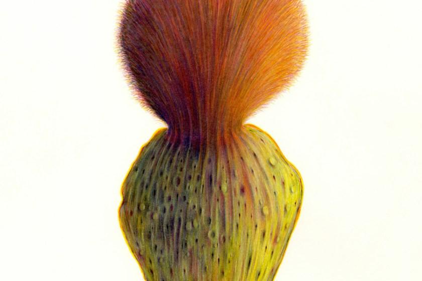 felipe-ortega-regalado-amor-vegetal-de-huerto-y-de-bosques-12