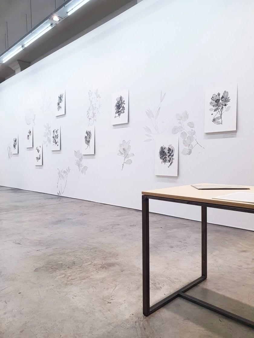 gabinete-de-dibujos-ernesto-casero-las-plantas-perdidas-08
