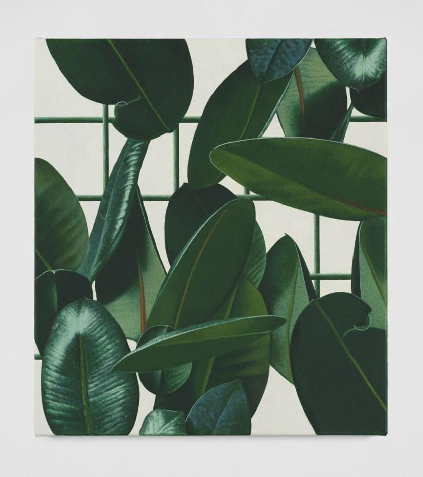 david-ostrowski-y-oliver-osborne-unen-trazos-y-plantas-15