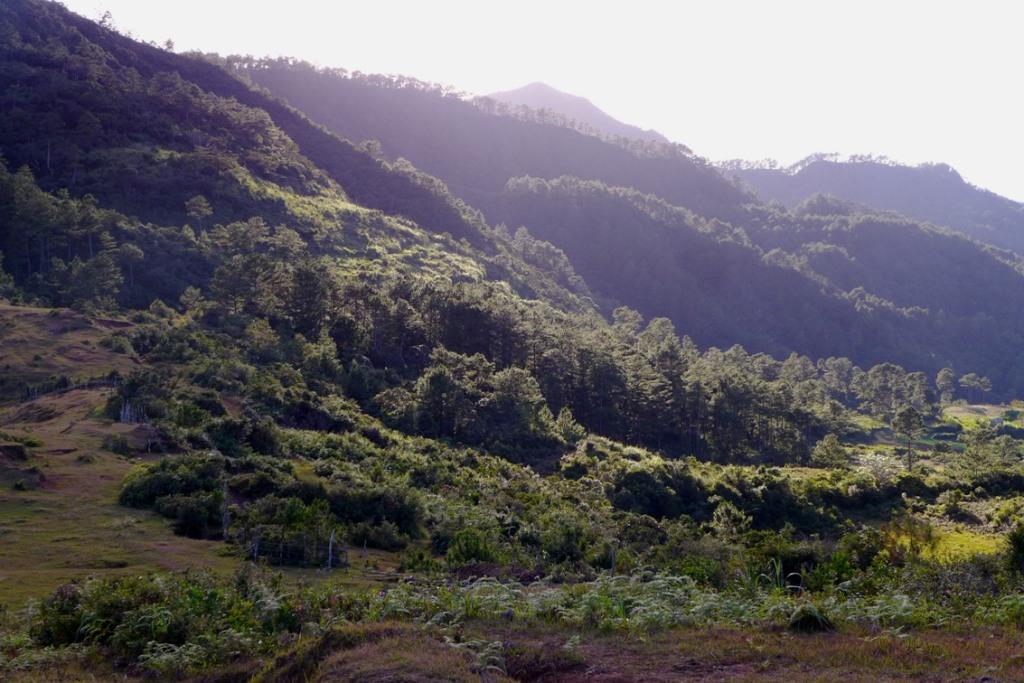 Mt. Ampacao Sagada
