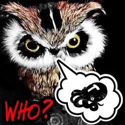 WHO-2