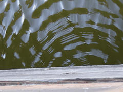 water with ripples emanating from central point