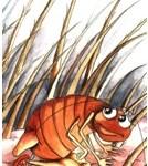 illustration of felini the flea