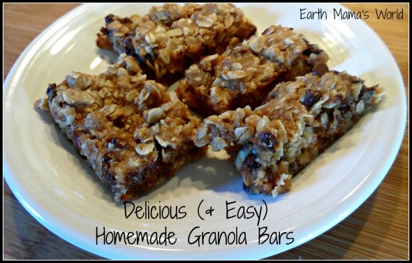Delicious (& Easy) Homemade Granola Bars