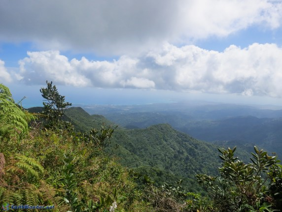 View from Los Picachos