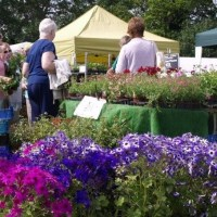 Solent Gardeners Fayre returns to Eastleigh this weekend