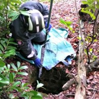 Lost dog rescued from well