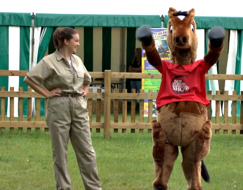 Preview Video: Fun at for all at New Forest Show 2016