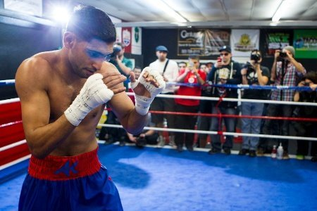 004 Amir Khan Amir Khan, Carlos Molina, Alfredo Angulo and Leo Santa Cruz Media Conference Call Transcript