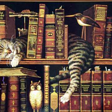 cats library books owls 1712x1368 wallpaper_www.wallpaperto.com_18_compressed