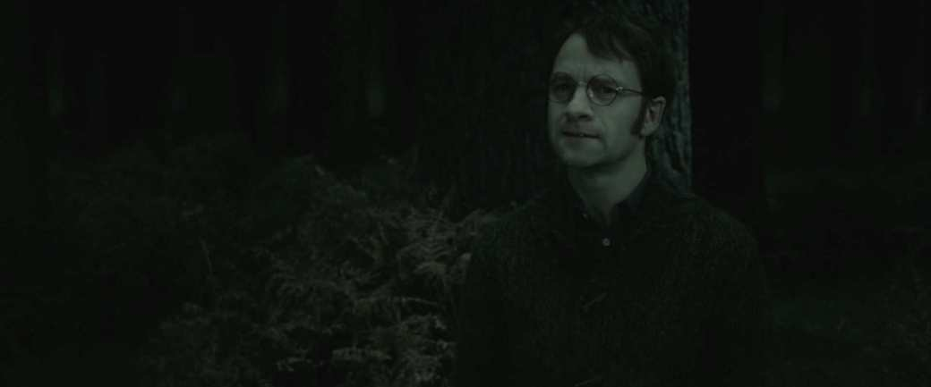 Harry-Potter-7-Deathly-Hallows-Part-2-lily-and-james-potter-27568269-1920-800