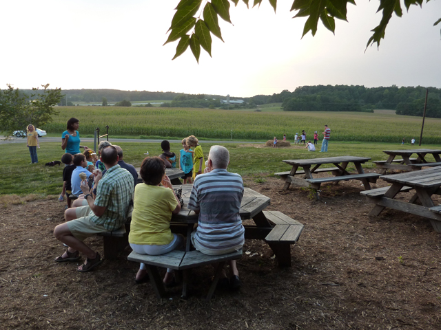 enjoying the view at Maple View Farm