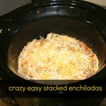Crazy Easy Stacked Enchiladas
