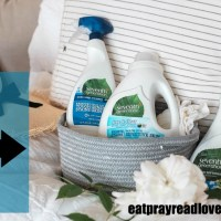 Free Natural Laundry Detergent and More!