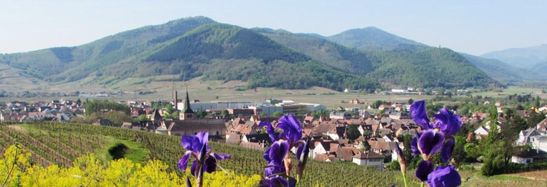 la Commune de Turckheim
