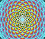 polar-lotus.jpg