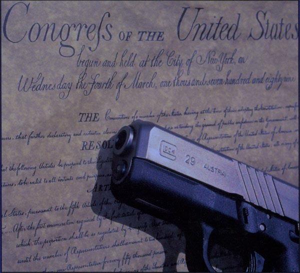 constitution03c1317056829238