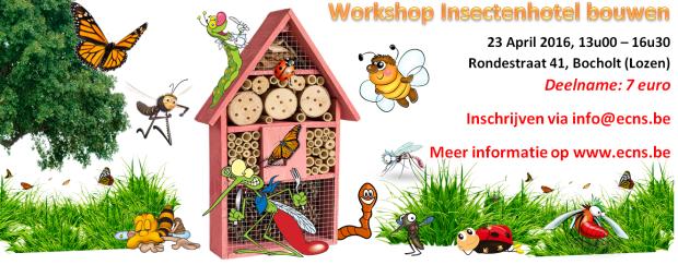 Workshop Insectenhotel