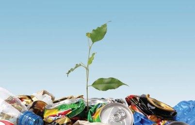 A Civilização do Lixo e Ecologia Urbana