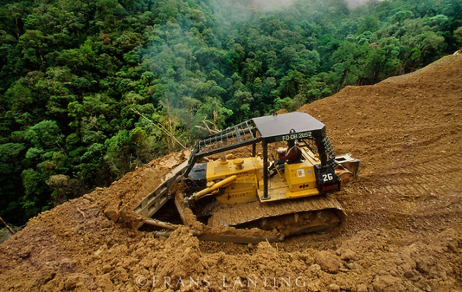 Bulldozer works on logging road in tropical rainforest, Sabah, Borneo