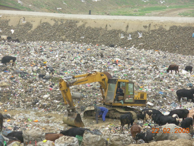 environmentalism and pollution management issue The current environmental issues page covers a wide variety of environmental  fresh water shortages and water pollution facts about  an issue of life and.