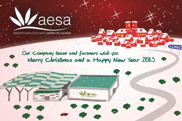 Newsletter_AESA_15