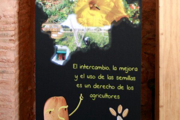 semillas_ecortijo_4