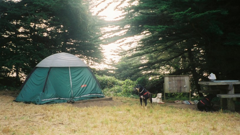 Bicentennial_Campground_San_Francisco