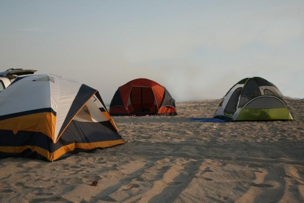 Eco Camping Chilika